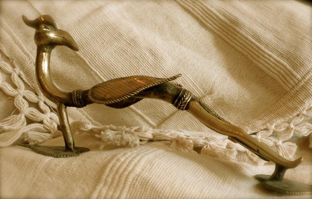 Bird pull